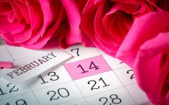 What to Do When You're Single on Valentine's Day